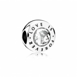 CHARM LOVE IS FOREVER - 791813CZ